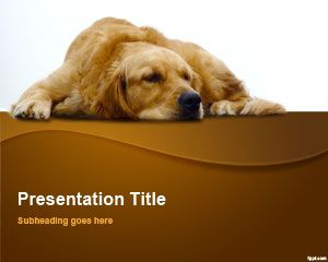 Free Golden Retriever PowerPoint Template | Free Powerpoint Templates
