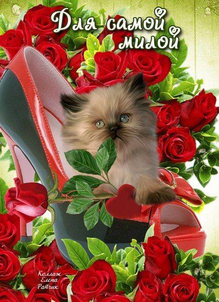 Первым, открытка самой милой и красивой девушке