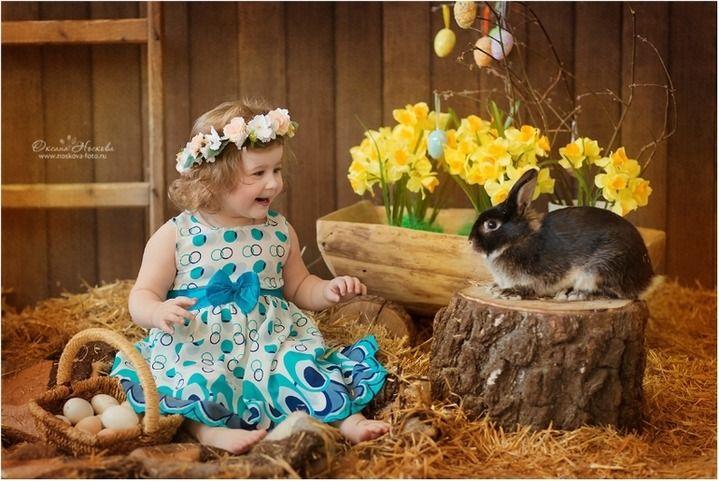 пасхальная фотосессия с кроликом: 22 тыс изображений найдено в Яндекс.Картинках