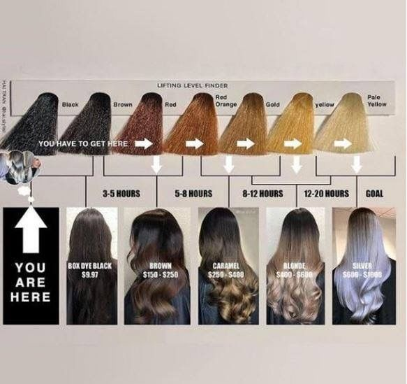 Levels Of Hair Black To Blonde Hair Color Correction Hair Hair Chart