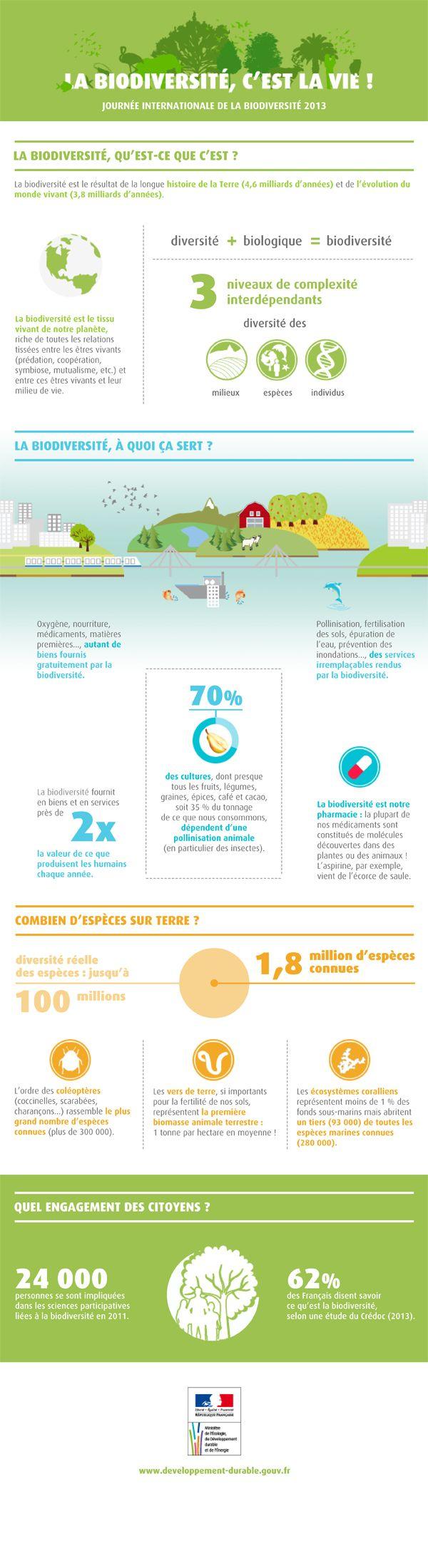 infographie sur la biodiversité réalisée par le ministère du développement durable