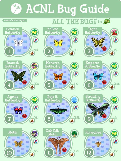 14 best images about animal crossing new leaf on pinterest for Acnl fish guide