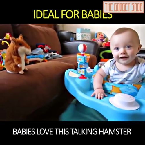 Must have hilarious talking hamster -- entire family will laugh. Great for kids, pets, and gift. Watch Video and Get Yours. https://productsmustgo.com/products/cute-talking-hamster-plush-toy-repeats-what-you-say?utm_content=buffer79cf8&utm_medium=social&utm_source=pinterest.com&utm_campaign=buffer https://video.buffer.com/v/5a6224c709293b11186bfff1