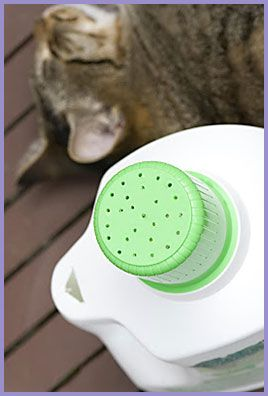 Works Amazing ! Turn Empty Laundry Detergent Bottle into fail proof Watering Can !