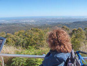 Viaggiare avendo una Lesione Spinale è un incubo!