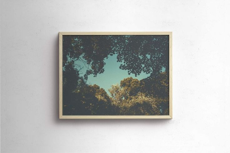 Studio Pale Grain - Limited edition prints & photographs from Stockholm. - The Window
