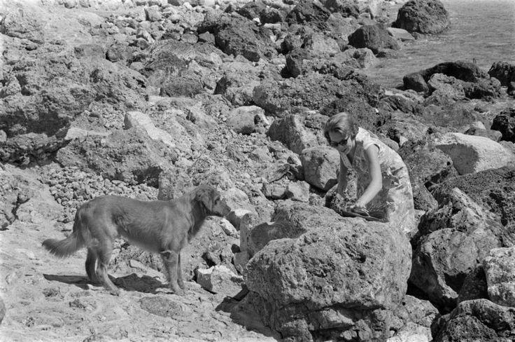 25 juli 1965 Het rotsige oppervlak van de kust bij porto ercole is wel heel iets anders dan het vaderlandse strand. Toch loopt prinses Beatrix barrevoets over de stenen bij een klim naar boven. Zij wordt opgewacht door haar hond Joris.