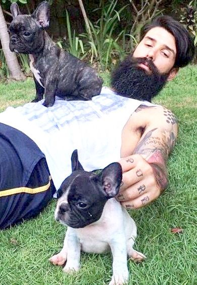 Dad and his 2 French Bulldog Puppies❤️