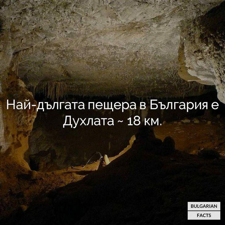 Намира се до село Боснек в подножието на Витоша. В нейните галерии текат 6 подземни реки. #bulgarianfacts #bulgaria #българия