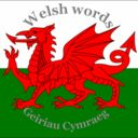 Welsh Word of the Day, Pronunciation