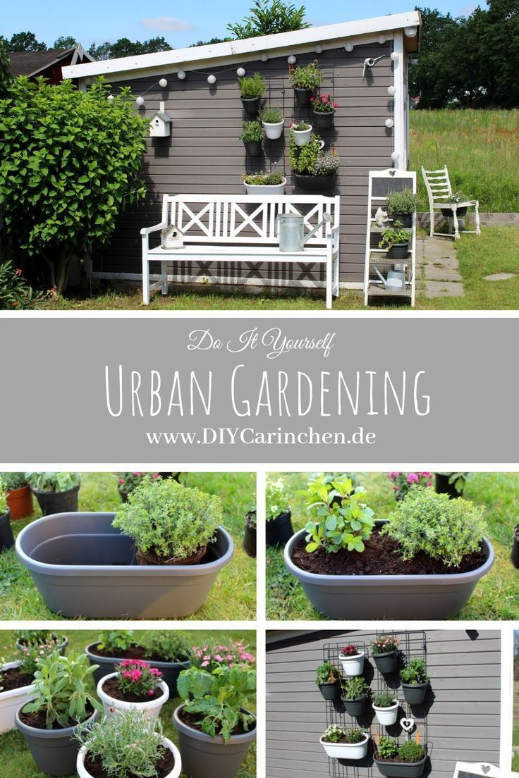 Diy Urban Gardening Mit Dem Emsa Wandgarten Tipps Und Tricks Garten Dem Diy Emsa Gardening Garten Mit In 2020 Urban Gardening Diy Urban Garden Wall Garden