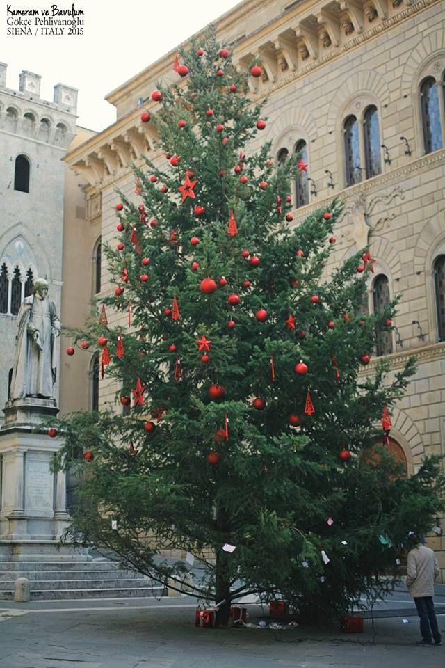 YILBAŞI AĞACININ HİKAYESİ : Tarihi Sümerlilere kadar dayanan yılbaşı ağacı... Yerden gökyüzüne kadar uzanan, hayat ağacı... En ucunda da Güneş vardır. Bu nedenle halen Hristiyanlıkta bile olsa yılbaşı ağacı süslenirken tepesine ışığı sembolize eden kocaman bir yıldız konulur.   Fakat ağaç süslemenin tarihi eski Türklere dayanıyor... Anadolu'da 22 Aralık'ta Yeni Doğuş kutlamaları yapılırdı. Akçamın altına Tanrı'ya hediyeler, dallarına bir sonraki sene için dilekleri sembolize eden ufak…