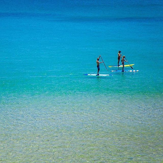 Exploring Noosa by SUP!