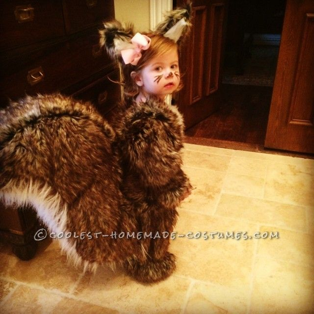 People Go NUTS for Toddler Squirrel Costume... Coolest Halloween Costume Contest
