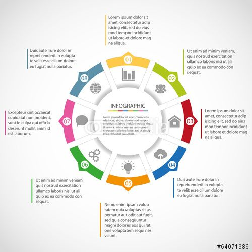 Vector: Circle infographic template