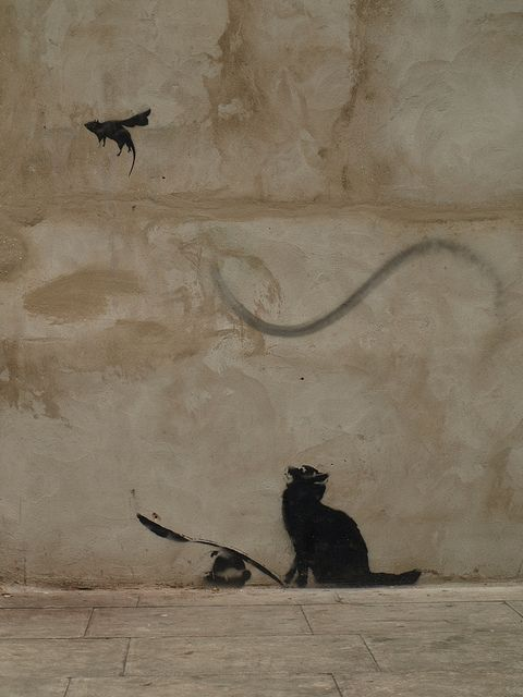 street art by Banksy . Cat and bird. 000