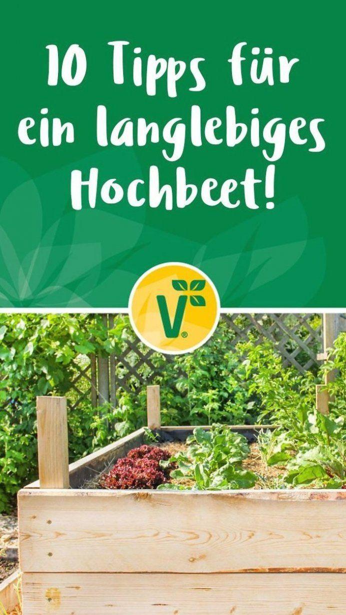 Hochbeet Selber Bauen So Geht S Hier Findest Du Eine Anleitung Garten Garten In 2020 Gardening For Beginners Container Gardening Vegetables Beginners Landscaping