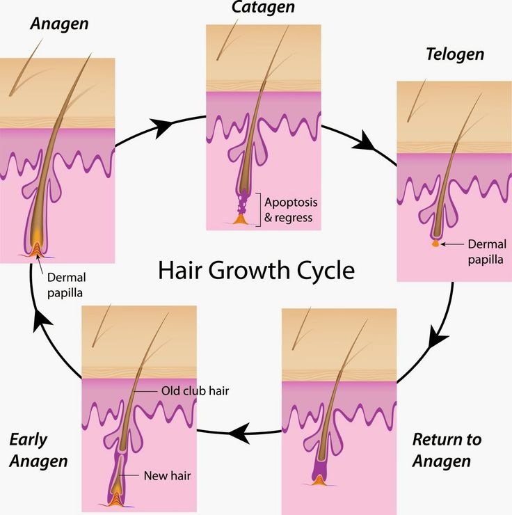 Saç Nasıl Hızlı Uzar     Eğer saç uzatma yöntemleri  konusunda araştırmalar yapıyorsanız bu yazımız tam size göre. Çünkü evvela saçların ...