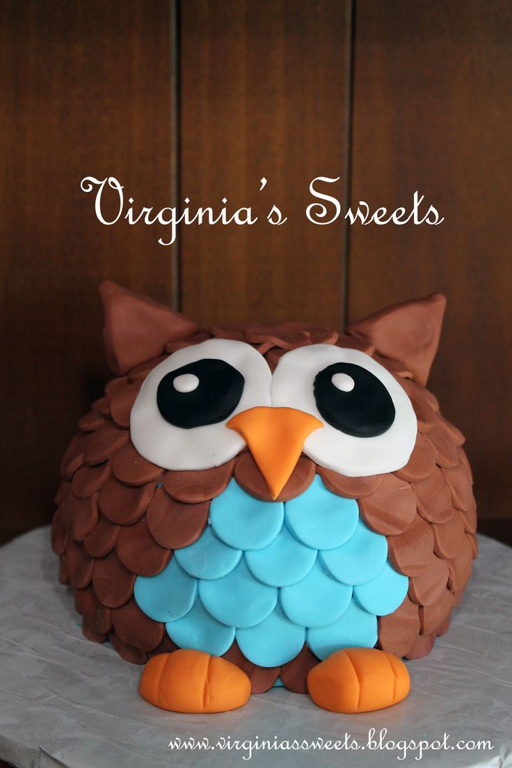 Owl Smash Cake - My son's smash cake for his 1 year photo session.