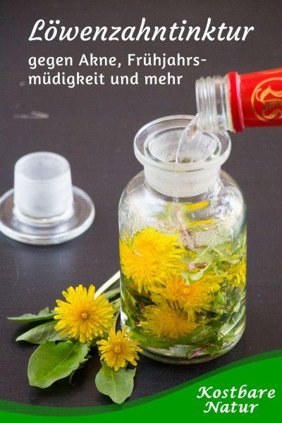 Löwenzahntinktur gegen Akne, Frühjahrsmüdigkeit und mehr