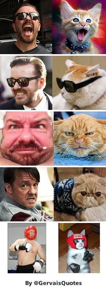 Ricky Gervais lol