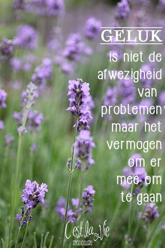 Geluk is niet de afwezigheid van problemen, maar het vermogen om ermee om te gaan.