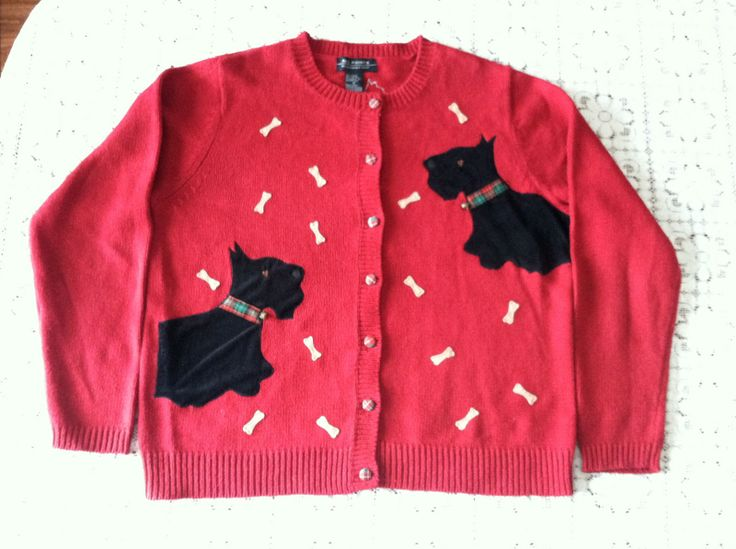 the red sweater by fae ng Fae myenne ng, bone 1993 fae myenne ng was born and reared in san francisco  the red sweater, features a young chinese-american woman narrator trying to .