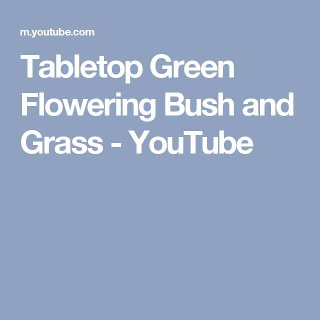 Tabletop Green Flowering Bush and Grass - YouTube
