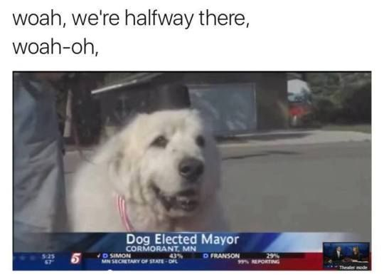 WOAH, WE'RE HALF WAY THERE WOAH-OH! DOG ELECTED MAYOR! TAKE MY PAW AND WE'LL MAKE IT I SWEAR! WOAH-OH! DOG ELECTED MAYOR!