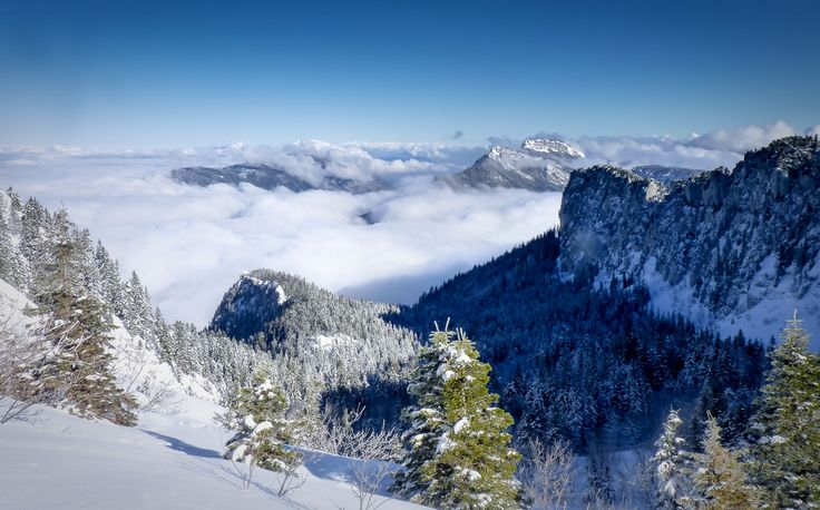 High panorama of snow-covered mountainside above clouds in the Massif de la Chartreuse, French Alps.