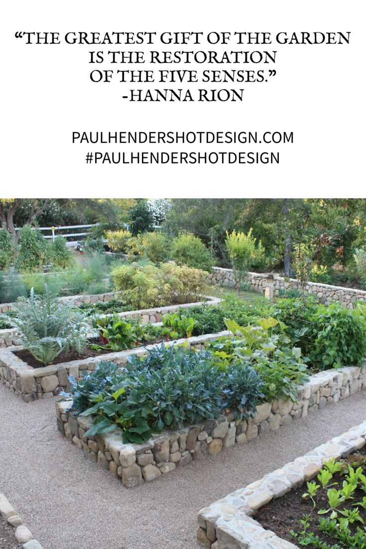 Chef Garden: This Spring Help Your Body Remain Well-balanced With A
