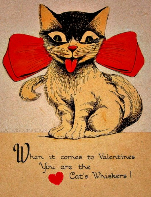 120 years of valentines with cats - Valentine Ties