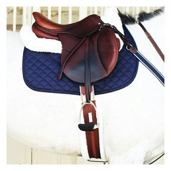 Equestrian fashion ❤ liked on Polyvore