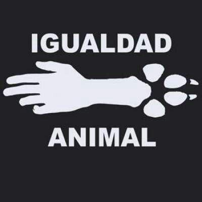 #igualdadanimal #noalmaltratoanimal