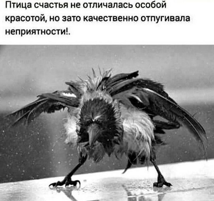 Igor Silka - Google+