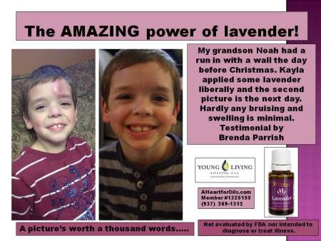 18 Best Images About Young Living Lavender On Pinterest