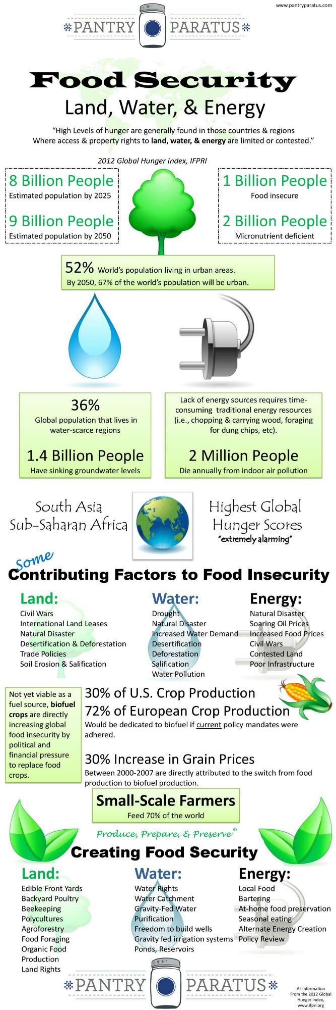 Food Security is a growing issue worldwide. Global Service Corps is working hard to overcome this issue in Tanzania though. Check out this infograph for more info.