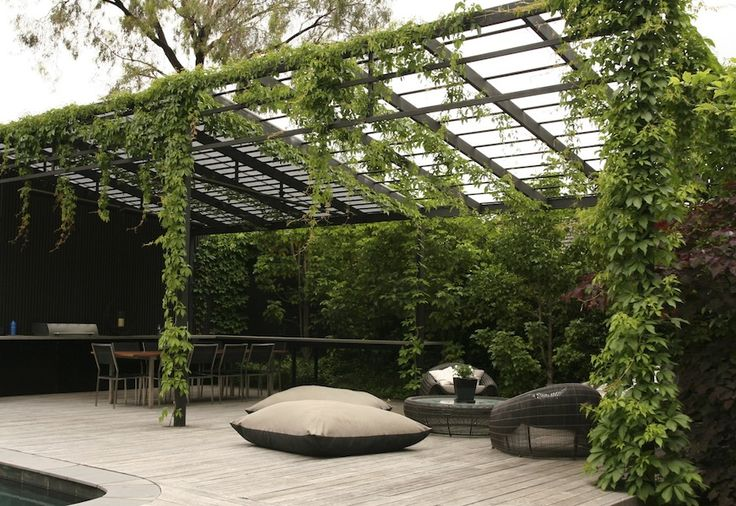 BBQ area with Pergola. i could do without the ivy but NOW THAT is a modern pergola.