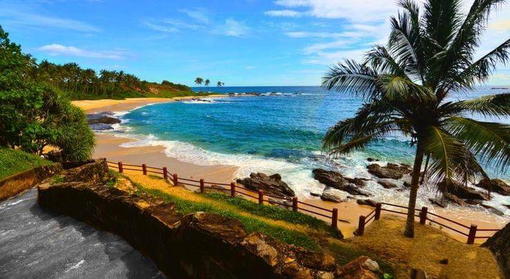 Отель Eva Lanka расположен на 1-й пляжной линии, в 6 км от центра города Тангалле и в 30 км от храма Мулкиригала, в окружении тропического сада и красивых песчаных пляжей. Пляж: песчаный. #путешествия  К услугам гостей отеля Eva Lanka стандартные номера, открытый бассейн, спа-салон и массажный кабинет. #туры  В отеле: 29 номеров. Все номера оснащены кондиционером, мини-баром, собственной ванной комнатой, где установлен душ, предоставляются бесплатные туалетно-косметические принадлежности...