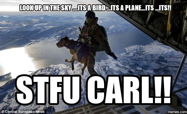 stfu carl memes - Yahoo Search Results