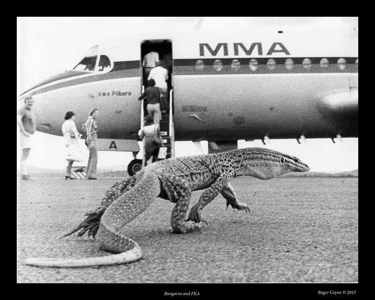 MMA 1972