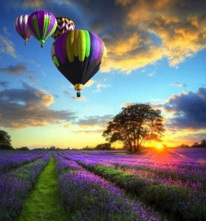 Hot Air Balloon Some Place Beautiful Bucket List