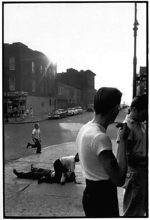 1950s brooklyn - an awesome photo album worth checking out