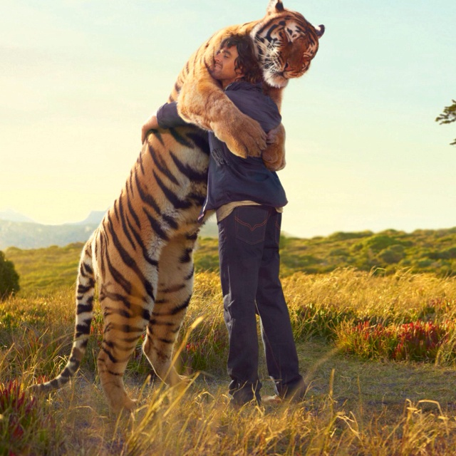 Happy tiger > Tiger rug