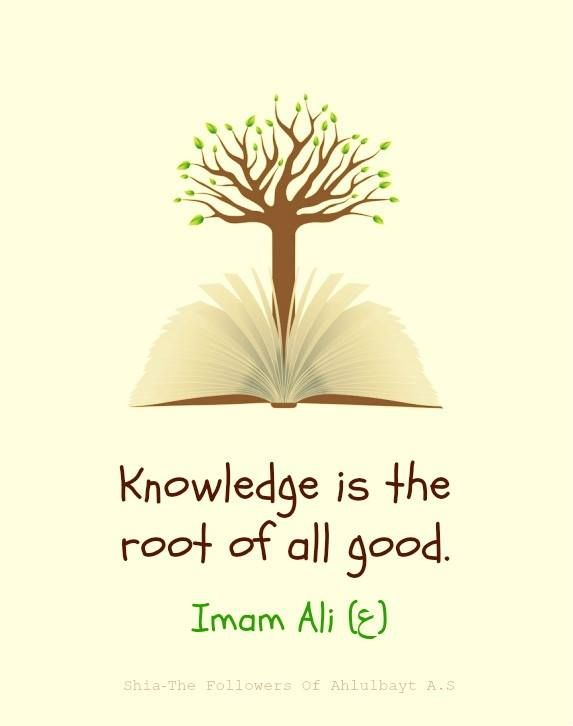 """ Knowledge is the root of all good."" — Imam Ali (ع)"