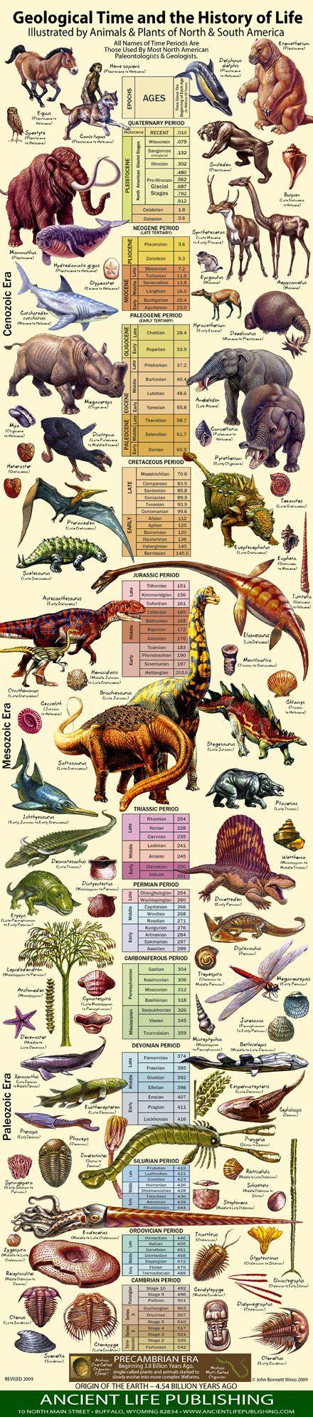history of life chart_2010_50dpi1