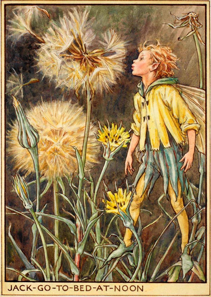 The Jack-Go-To-Bed-At-Noon Fairy by Cicely Mary Barker