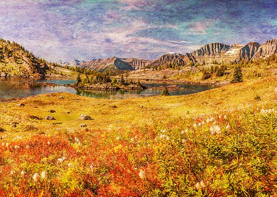 Mountain Photography - Vintage Decor, Banff, Landscape Image, Wild Flowers, Summer, Red, Rustic, Dreamy Texture, Warm Colors, Nature