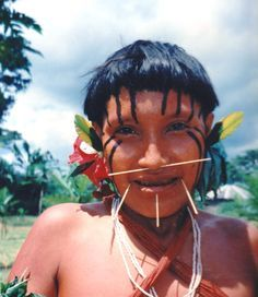 Yanomami woman. Yanomami Indians and many other tribes are ...