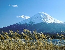 Tokyo Travel Guide http://hotelworld.tv/guides.html #tokyo
